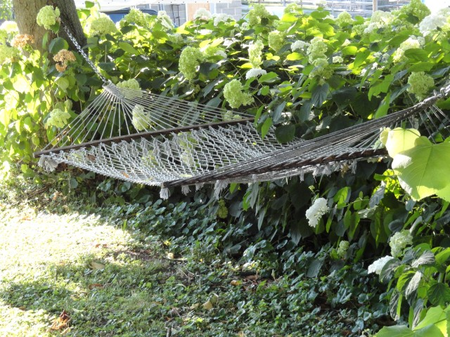 I'm always aiming for that hammock.