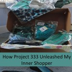 How Project 333 and The Vivienne Files Unleashed My Inner Shopper