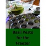 Freezer Pesto -- step-by-step