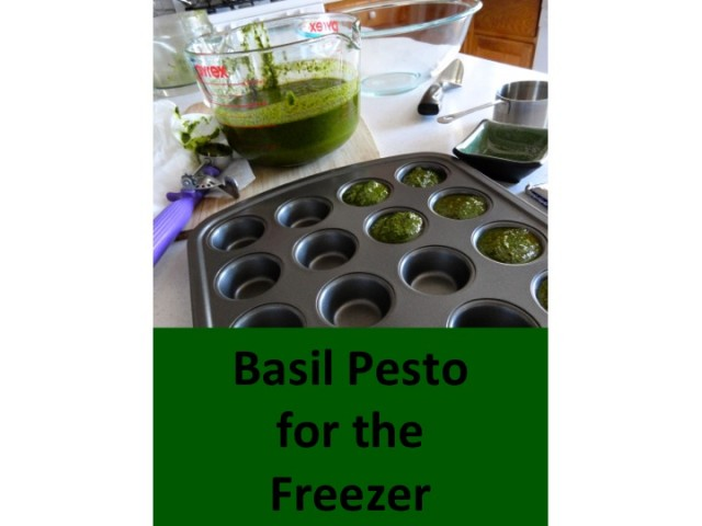 Freezer Pesto -- step-by-step @ inmykitcheninmylife.com